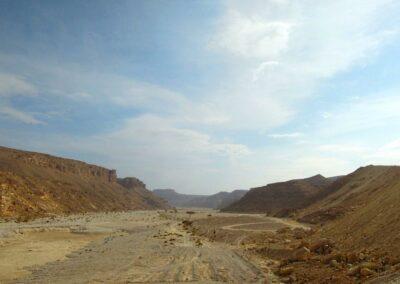 Wüste-nach-Sturzfluten