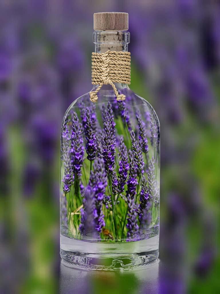 Lavendel-in-der-Flasche