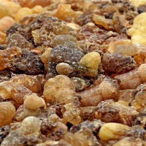 Weihrauch Oman Hojari Boswellia sacra amber