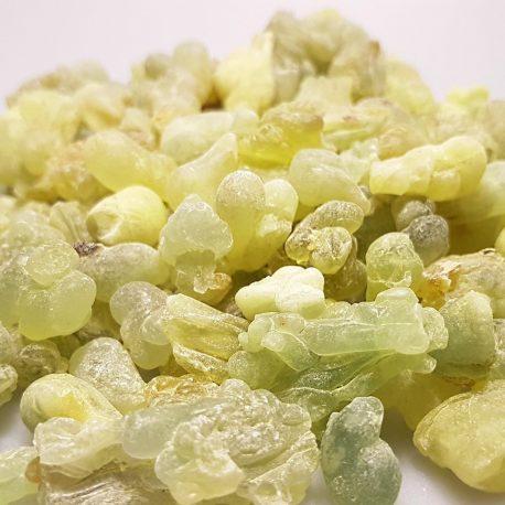 weihrauchwelt-boswellia-carteri-somalia grün